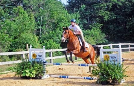 Riverview Horses