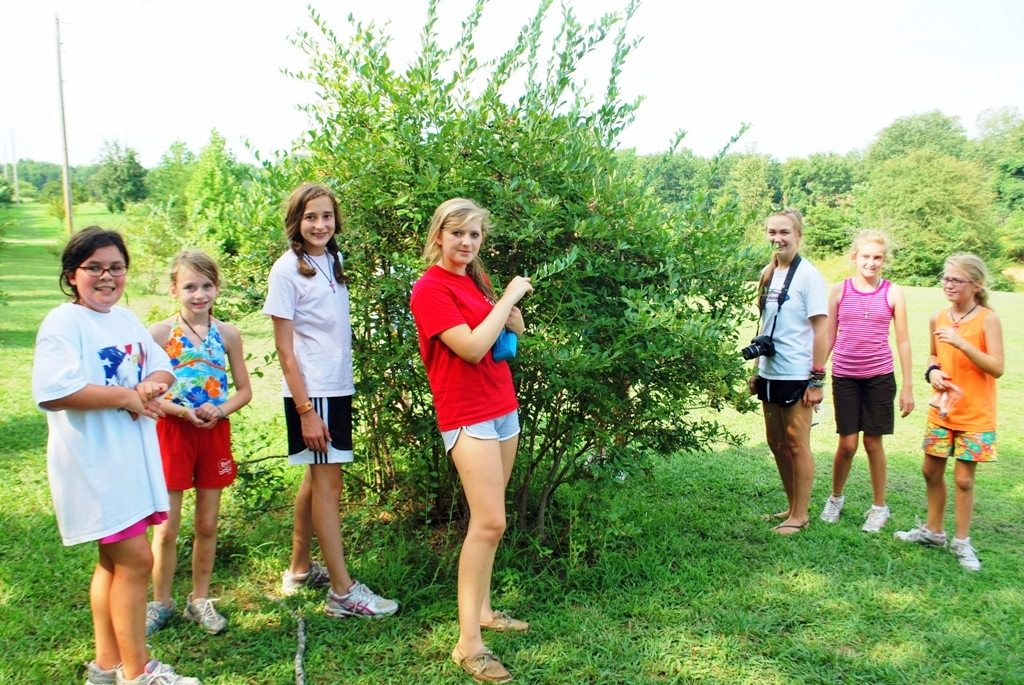 Outdoor Living Skills at Riverview